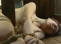 【ヘンリー塚本】ヘンリー塚本が描く縛られ犯されながら愛液を漏らす女縛られ犯されることを望み妄想しながらオナニーする女